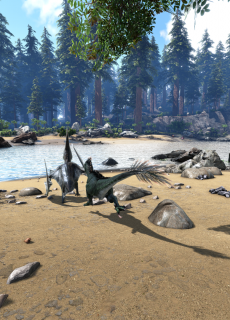 Dinosaures Communs